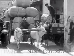 SG 1938 Sg River upstream - bullock cart & lorries (2)