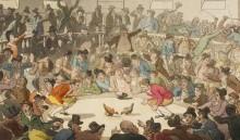 Cock Pit London 1808